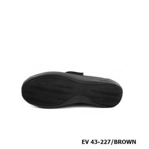 D227 Model EV 43-227